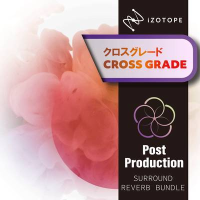 [特価 2019/12/10迄] iZotope Post Production Surround Reverb Bundle クロスグレード版 from RX Post Production Suite1-3 [ダウンロード版] 【アイゾトープ】