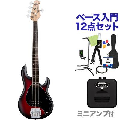 STERLING by Musicman STINGRAY RAY5 RRBS 5弦ベース 初心者12点セット 【ミニアンプ付】 【スターリン SUB RAY5】