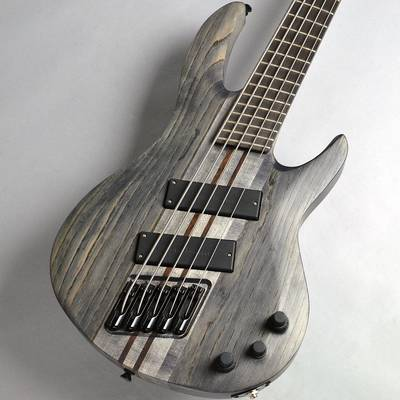 Strictly 7 Guitars Sidewinder5 T Fanned Fret / Black Stain エレキベース(5弦) 【ストリクトリー7ギターズ】【新宿PePe店】